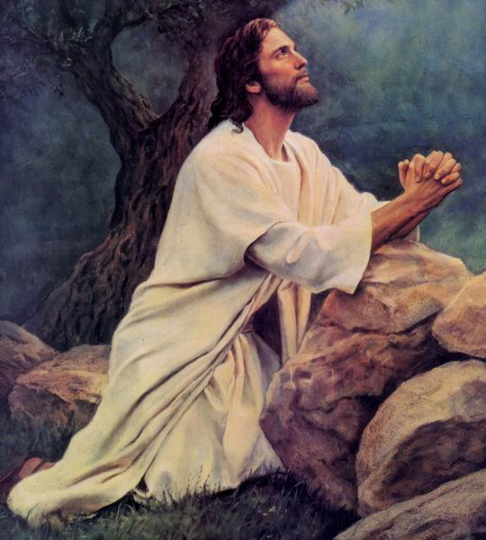 why did jesus die atonement / the passover: why did jesus christ have to die the passover why did jesus christ have to die posted on may 31 and i have given it to you on the altar to make an atonement for your souls.