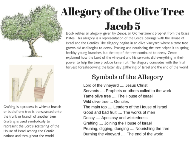 Allegory of the olive tree chart